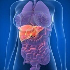 Radioembolização hepática deve ser coberta por plano de saúde